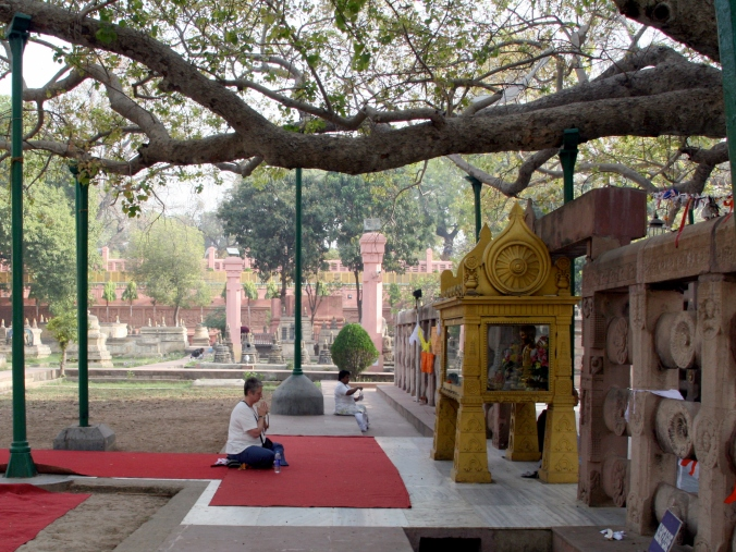 Meditating under the Bodhi Tree/Bodh Gaya
